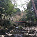 豊田市街地から近くて自然の中でマス釣り・バーベキューを楽しめる神越渓谷に行ってきたよ!